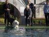 2017-10-14_Hundeschwimmen_Bild-072