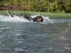 2017-10-14_Hundeschwimmen_Bild-087
