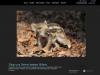 2013_03_30_Fotocommunity_Startseite