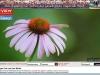 2013_08_03_View_Startseite